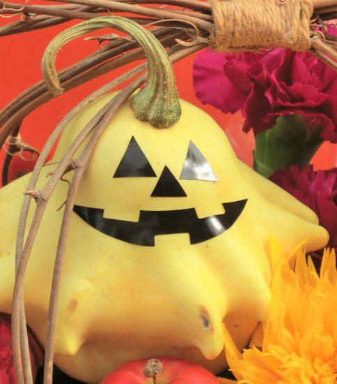 Hallowee flower